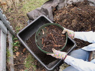 Shaking compost sieve to harvest nature's gold