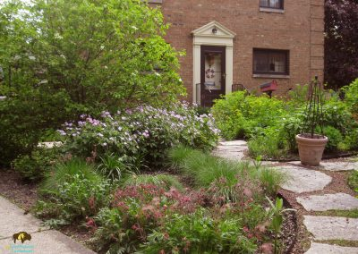Elmhurst Project – Native plants, wildlife habitat, rain garden, and paths for exploration in this townhome landscape