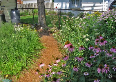Brookfield Project – Even small yards can be beautiful and make a positive difference.