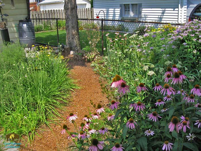 Wildlife habitat, rain barrels, recycled stone, permeable walkway backyard photo