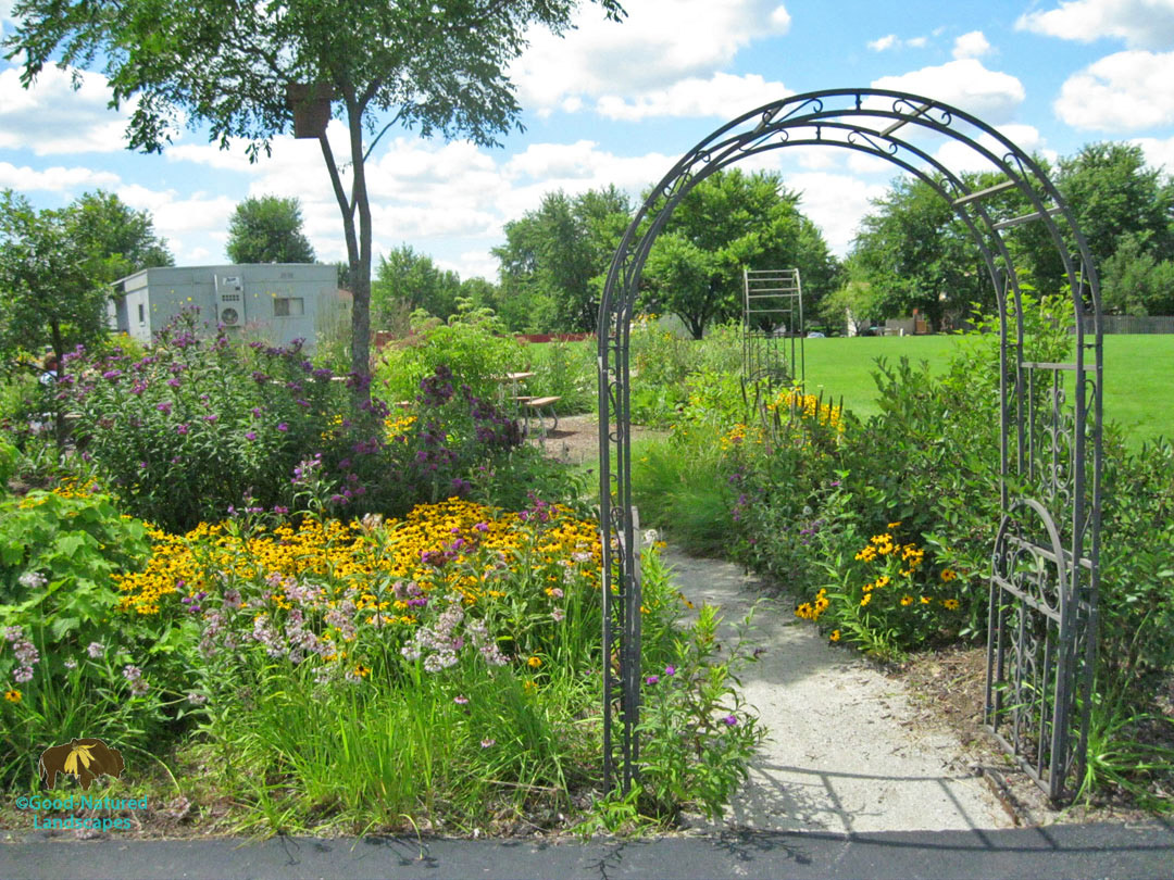 Carol Stream outdoor classroom habitat stormwater photo