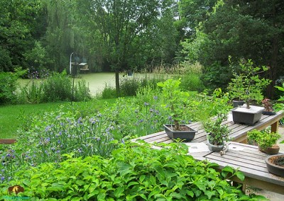 Warrenville Project – Small native garden around homeowner's bonsai work area, with unobstructed views of onsite wetland