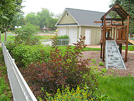 Native plants , screening, habitat side yard photo