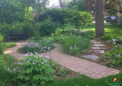 Wheaton – Small woodland shade garden redesign