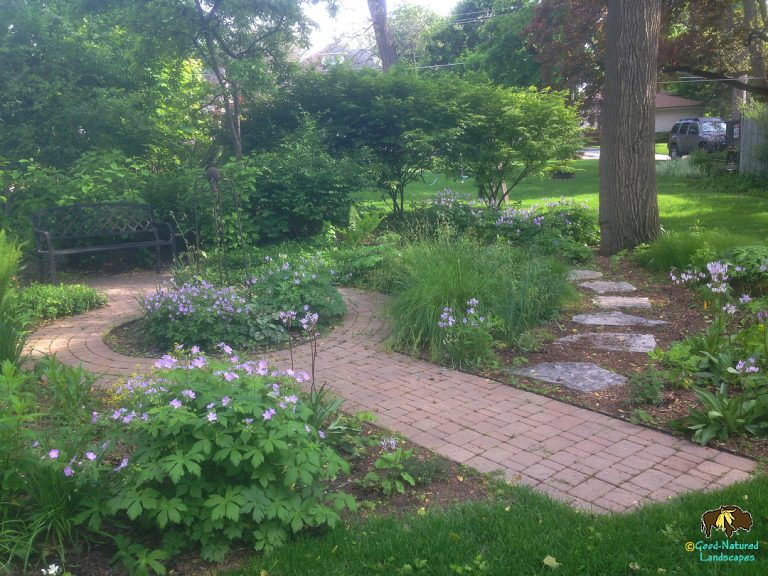 Wheaton – Adding beauty, form and function to a small woodland garden